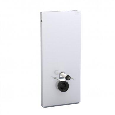 Pakabinamo WC modulis Geberit Monolith, 114 cm (įv. spalvų)