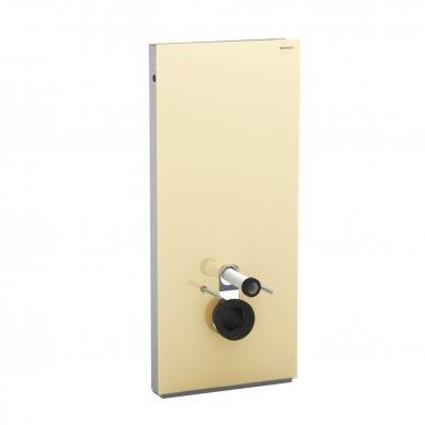 Pakabinamo WC modulis Geberit Monolith, 114 cm (įv. spalvų) 9