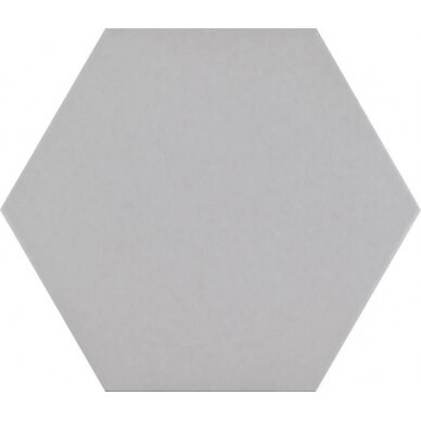 Akmens masės plytelės Hex Basic 25x22 cm 5