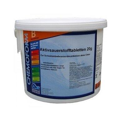 Aktyvaus deguonies tabletės Chemoform AG po 20 g, 5 kg 2