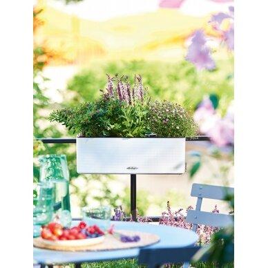 Vazonas Balconissima Color LECHUZA 2