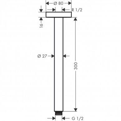 Dušo alkūnė Hansgrohe montuojama į lubas S 30 cm 3