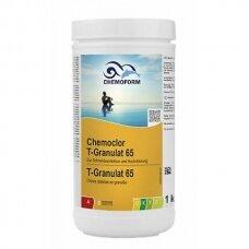 Greito tirpimo chloras Chemoform chemoclor T-65 granulės, 1kg