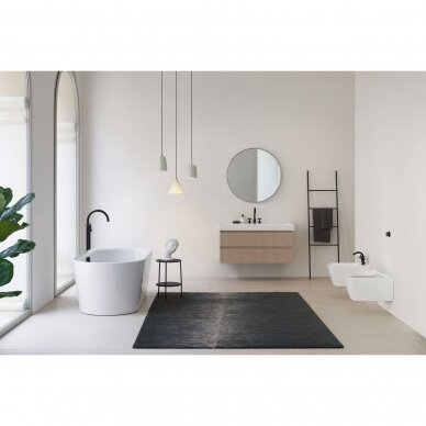 GSI  pakabinama bide 54.5X37cm 3