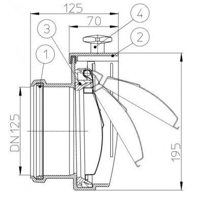 Kanalizacijos atbulinis vožtuvas HL712.0 su profiliuoto nerūdijančio plieno užsklanda 2