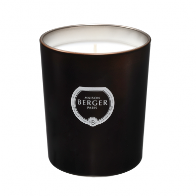 Kvapioji žvakė Maison Berger Sandalwood Temptation 2