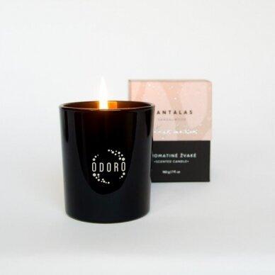 Kvapioji žvakė Odoro Mood Santalas