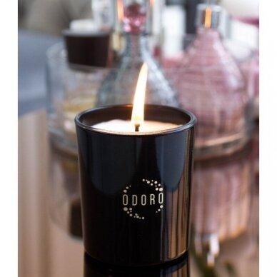 Kvapioji žvakė Odoro Mood Santalas 2