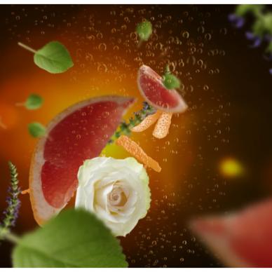Kvapo papildymas lempai Maison Berger Exquisite Sparkle 3