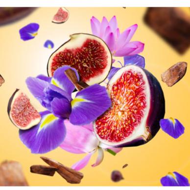 Kvapo papildymas lempai Maison Berger Sweet Fig 2