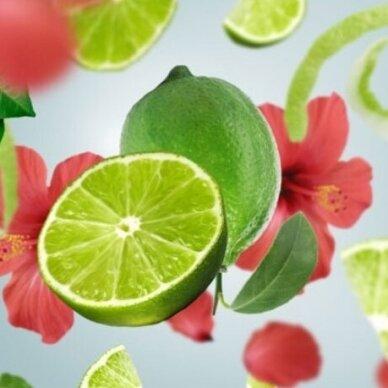 Kvapo papildymas lempai Maison Berger Tahitian Green Zest 2