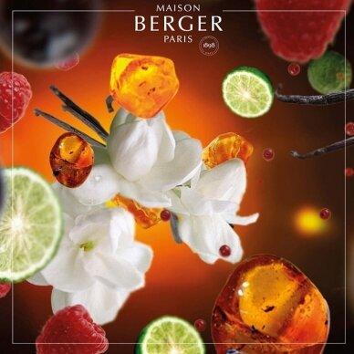 Kvapo papildymas Maison Berger Oriental Star 2