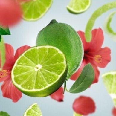 Kvapo papildymas Maison Berger Tahitian Green Zest 2