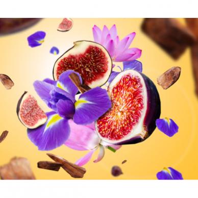 Kvapų difuzorius Maison Berger Sweet Fig Amphora 4