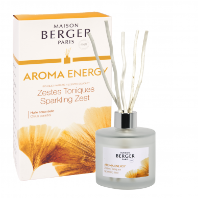 Namų kvapas Maison Berger Sparkling Zest