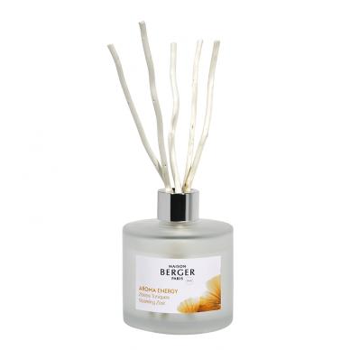 Namų kvapas Maison Berger Sparkling Zest 2