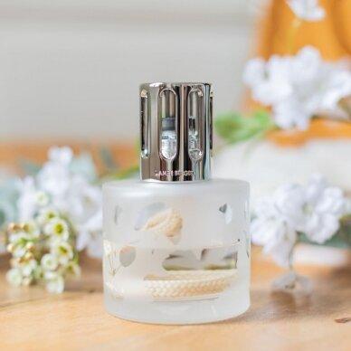 Namų kvapo rinkinys Maison Berger Aroma Relax 3
