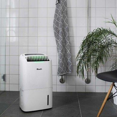 Oro sausintuvas- valytuvas Wood's Hybrid AD 20 3
