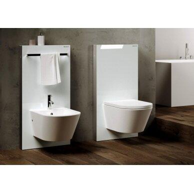 Pakabinamo WC modulis Geberit Monolith, 114 cm (įv. spalvų) 4