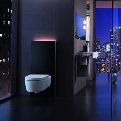 Pakabinamo WC modulis Geberit Monolith Plus, 101 cm (įv. spalvų) 3