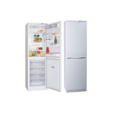 Šaldytuvas Atlant XM 6025-100 A+