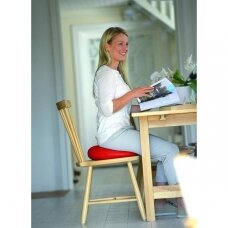 Sėdėjimo pagalvėlė SISSEL® SitFit Plus