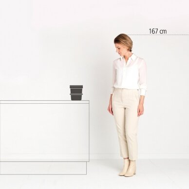 Šiukšlių dėžė Brabantia Sort & Go 6L 5