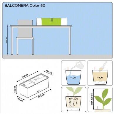 Vazonas Balconera Color LECHUZA 8