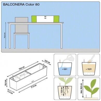 Vazonas Balconera Color LECHUZA 9