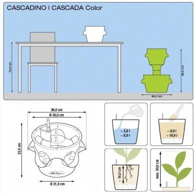 Vazonas Cascadino LECHUZA 8