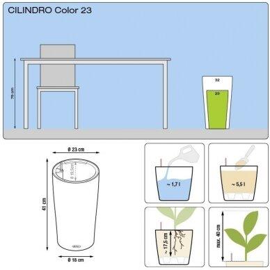 Vazonas Cilindro Color LECHUZA 5