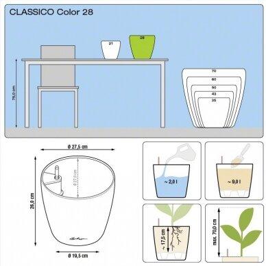 Vazonas Classico Color LECHUZA 7