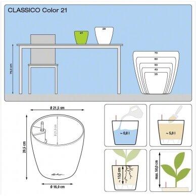 Vazonas Classico Color LECHUZA 9