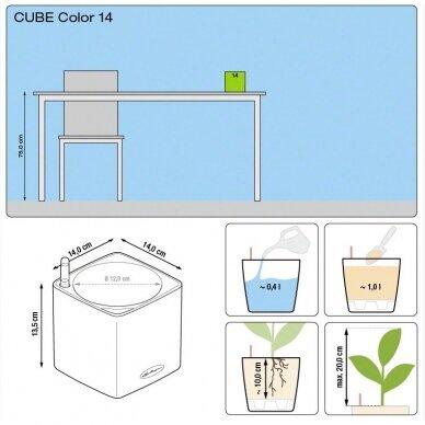 Vazonas Cube Color LECHUZA 5