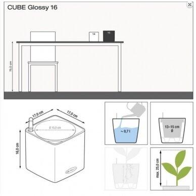 Vazonas Cube Glossy LECHUZA 5