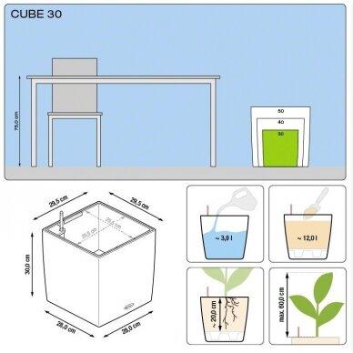 Vazonas Cube LECHUZA 5