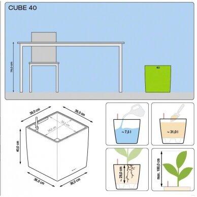 Vazonas Cube LECHUZA 6