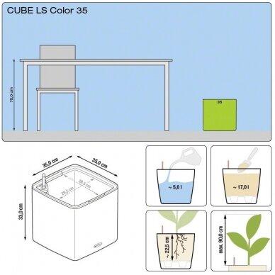 Vazonas Cube LS Color 35 LECHUZA 6