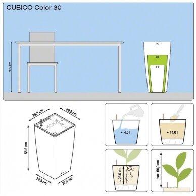 Vazonas Cubico Color LECHUZA 10
