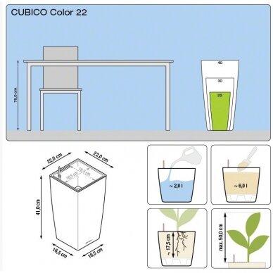Vazonas Cubico Color LECHUZA 11