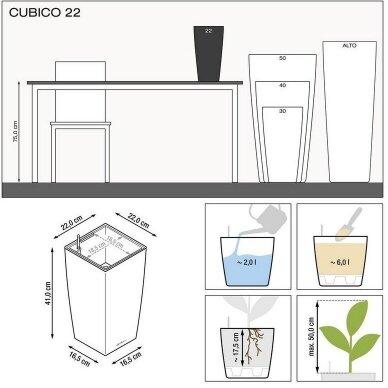 Vazonas Cubico LECHUZA 4
