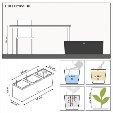 Vazonas Trio Stone LECHUZA 5