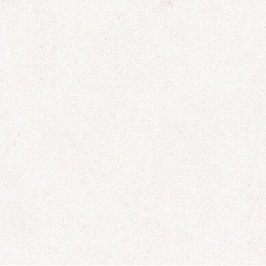 Akmens masės plytelės Vintage Blanco 25x25 cm