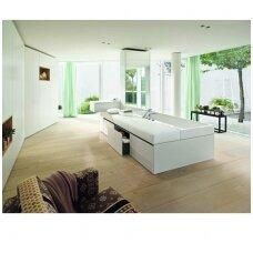 Vonios kambario baldai: ko iš jų norėti?