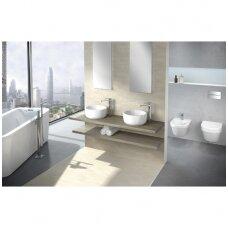 Vonios kambarys: metas pamiršti nuobodžius praustuvus!